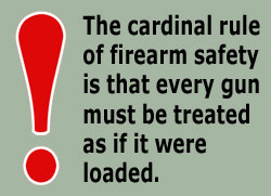 Image Source: http://kisbyto.blogspot.com/2012/08/gun-safety-2012-update.html