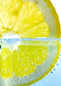 Business 099: The Lemonade Stand