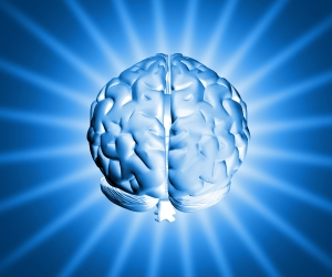 Image result for The human brain takes up 2% of the human body but uses 20% of its energy.