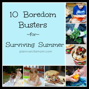 Image Source: http://plainvanillamom.com/2013/05/10-boredom-busters-for-surviving-summer.html